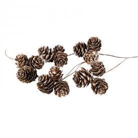 larch-cones-natural-white