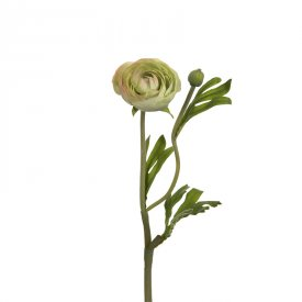 artificial-ranunculus-lime