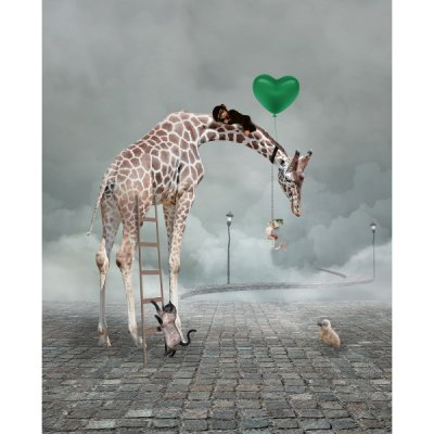 Poster Giraff, 30x40 cm - By On